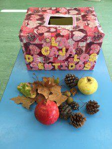 la caja del otoño (2)